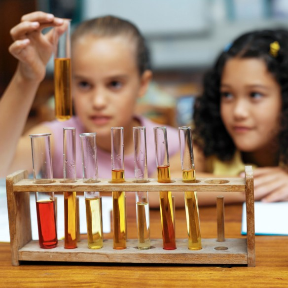 Two Girls (10-12) Looking at a Rack of Test Tubes