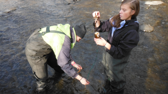 Lyndsay and Jordan check the ibutton sensor and collect water samples at Mill Brook.