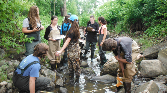 BFA students Rebekah Larose and Sophie Lee (right center) along with students from Castleton, Harwood Union and Rice under the guidance of Katie Chang (CWDD Research Technician) measure water quality and stream velocity at Monroe Creek near Shelburne, VT.