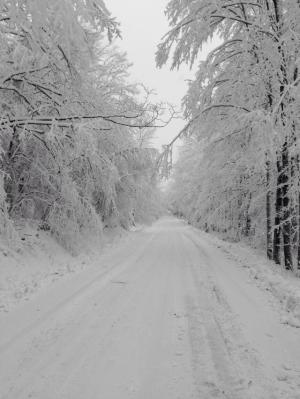 snow 6