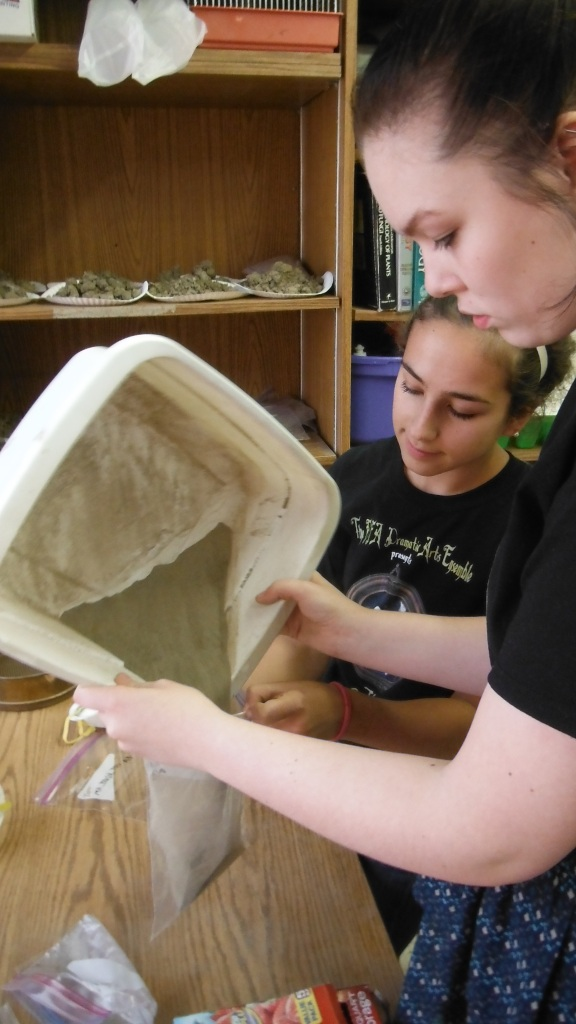 BFA students Sophie Lee (foreground) and Rebekah Larose prepare soil samples for analysis.