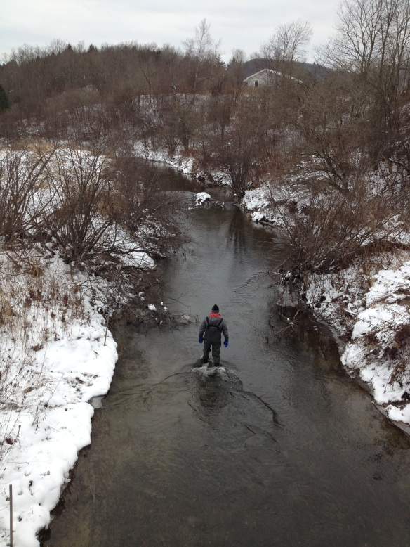 BFA High School Science Teacher Tom Lane wades up Black Creek to remove temperature and stagesensors earlier this winter.