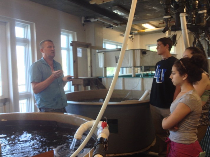 (Dave Remsen Director of Marine Specimen Collections at the Marine Biological Laboratory at Woods Hole describes the importance of marine specimens to research as BFA students Rebekah Larose, Dave Legris and Sophie Lee look on.)