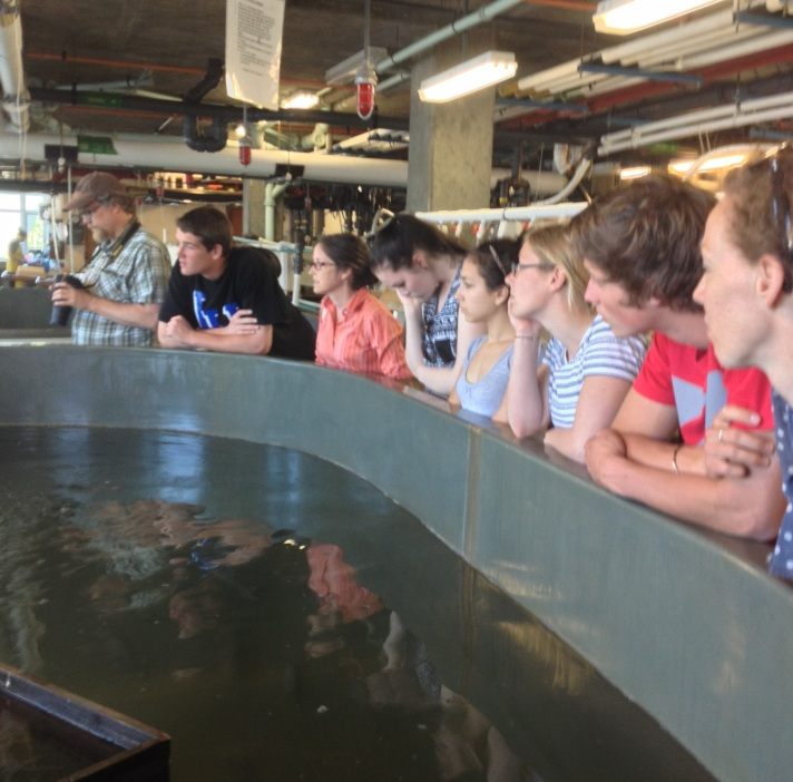 """(Dr. John Schade, Dave Legris, Dr. Sue Natali, Sophie Lee, Rebekah Larose, German Research Assistant, HS intern from CO, Dana Mock listen around the """"squid tank"""" to Dave Remsen describe the Lab's activities.)"""