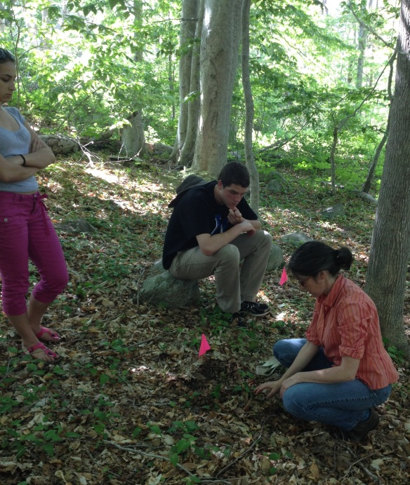 (WHRC scientist Dr. Sue Natali demonstrates removing decomposition bags for  analysis while BFA students Rebekah Larose and David Legris look on.)