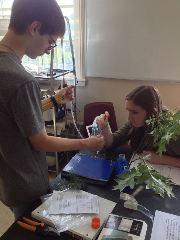 "(BFA students Devan Borthwick (left) and Samantha King set-up an experiment to measure transpiration rate in Quercus palustris (Pin Oak) at the ""Leaves of Green"" workshop, St. Michael's College.)"