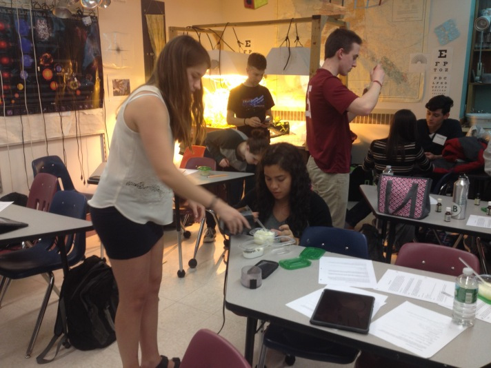 (Puerto Rican exchange students join students in Botany class at BFA making salt scrubs as a closing activity while studying plant tissues. BFA student Gianna foreground with PR student Grecia, BFA's Ben behind them with Elliot, teacher at Juan Ponce de Leon in PR as well as PR students Kristopher and Keisha in the back.)