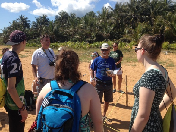 BFA students observe a loggerhead turtle nest at Northeast Ecological Corridor (NEC), in Luquillo, PR. Diana Ju, member of the Tortuguero Group led the tour.