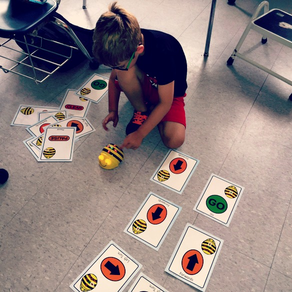 a child discovers a beebot