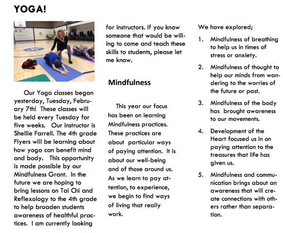 FES yoga infographic.png