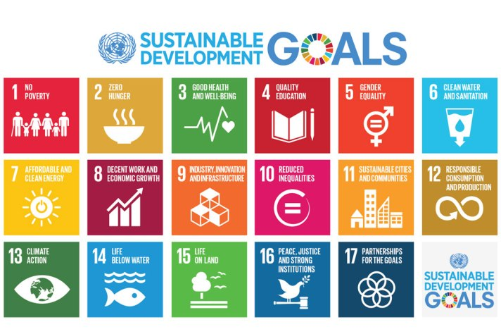 The UN Goals for Sustainability