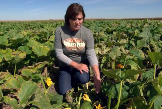 Live From the Farm: Technology and Soil Science