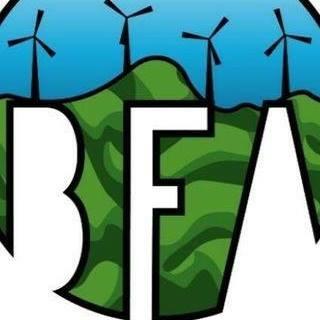 Ultimate BFA Fairfax Team Logo