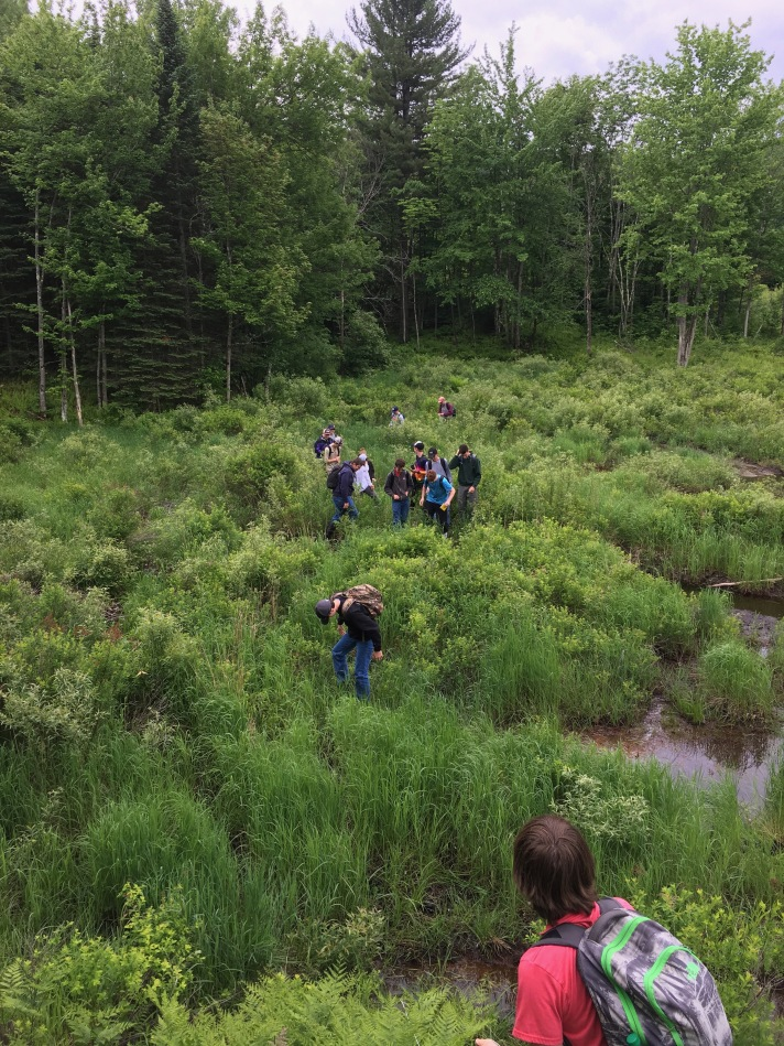 (Moving through a beaver dam in the first minutes of Day 1. Wesley in the foreground.)