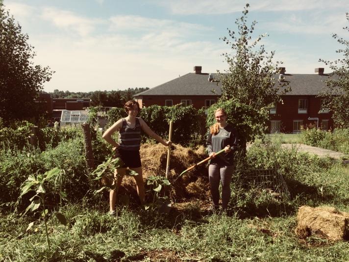 turning comnpost
