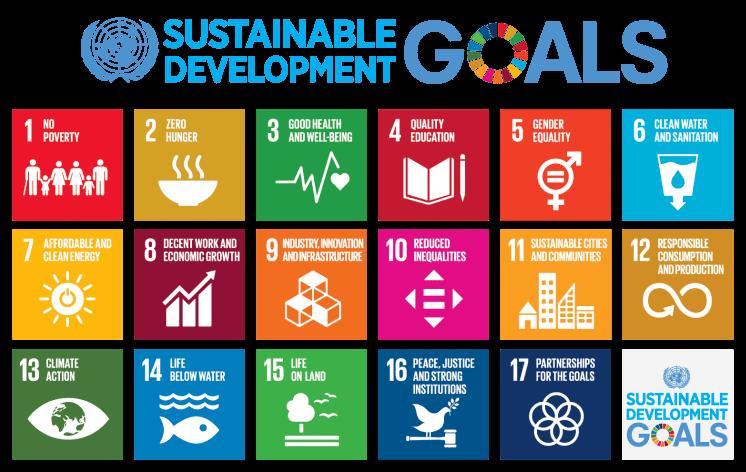 787px-Sustainable_Development_Goals_chart.svg
