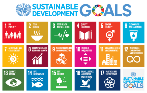 787px-Sustainable_Development_Goals_chart.svg
